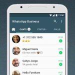 دانلود برنامه WhatsApp Business برای اندروید