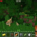 Minecraft-Pocket-Edition-Screenshot (1)